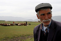 At Autumn Pasture - village of Tahulkey, eastern Turkey