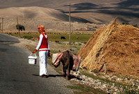 Going Home - village of Çaliher, eastern Turkey (2008)